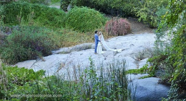 campbell creek estate wedding