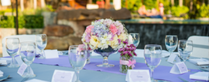 READY, SET, GO: Beginning Your Wedding Venue Search
